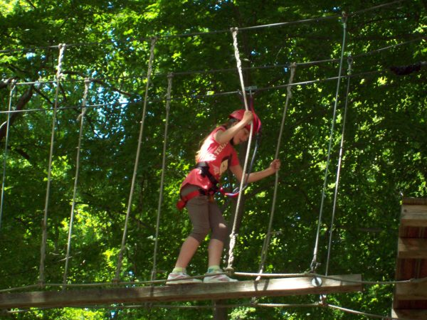 Mecklenburger activity : Kletterwald Plau