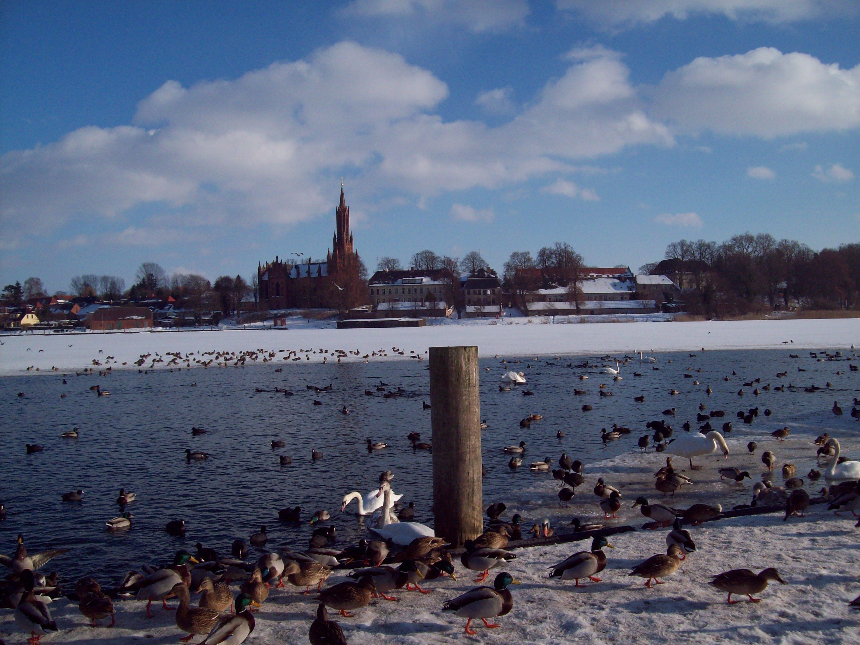 Kloster Malchow im Winter